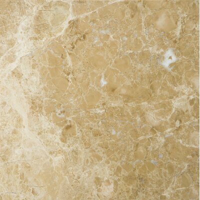 18 x 18 Marble Field Tile in Emperador Light