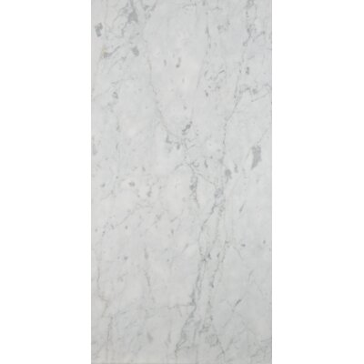 Marble 12 x 24 Field Tile in Bianco Gioia Honed