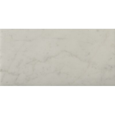 Marble 16 x 32 Field Tile in Bianco Gioia