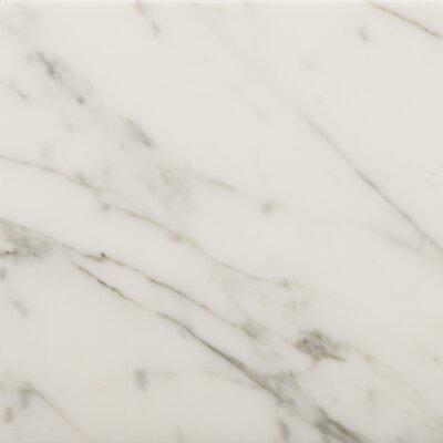 Marble 24 x 24 Field Tile in Bianco Gioia