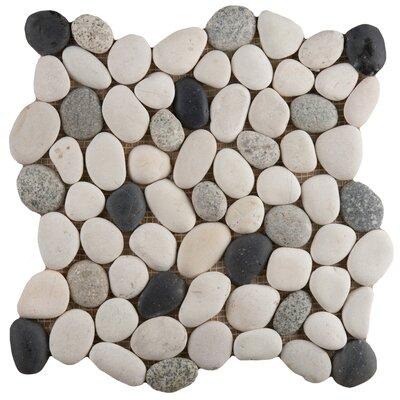 Venetian Pebbles 12 x 12 Mosaic Tile in Italia Blend