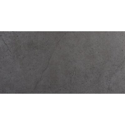 St Moritz II 12 x 24 Porcelain Field Tile in Gray