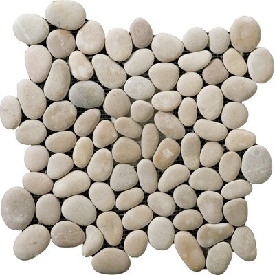 Venetian Pebbles 12 x 12 Mosaic Tile in Natural Texture Reward