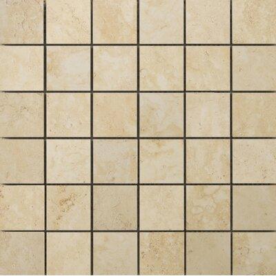 Lucerne 2 x 2/13 x 13 Porcelain Mosaic Tile in Grassen