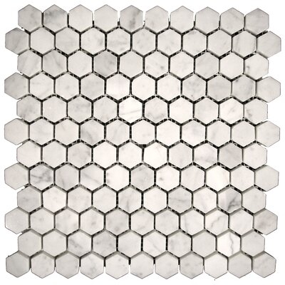 Marble Hexagon Mosaic Tile in Bianco Gioia Honed