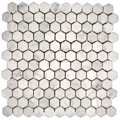 Marble Hexagon Mosaic Tile in Bianco Gioia Honed
