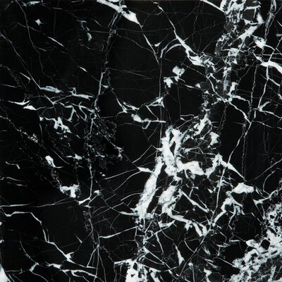 18 x 18 Marble Field Tile in Black/White