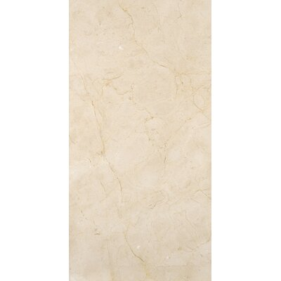 Marble 3 x 6 Subway Tile in Marfil Classico