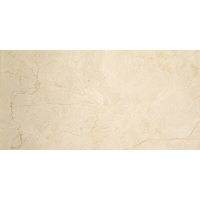 Marble 4 x 8 Marble Tile in Marfil Classico