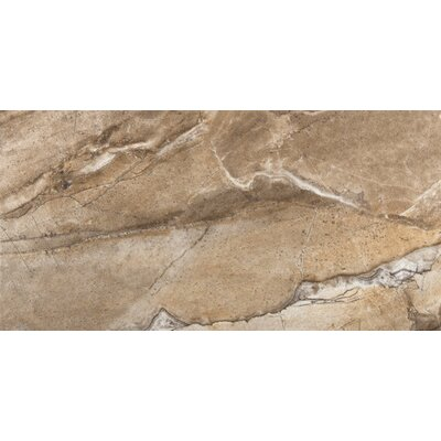 Eurasia 17 x 35 Porcelain Field Tile in Noce