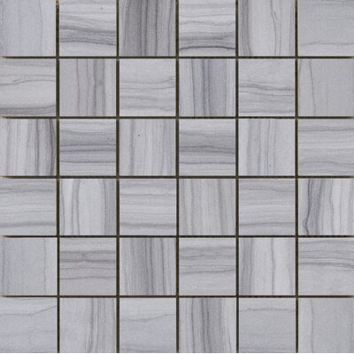 Chronicle 2 x 2/12 x 12 Porcelain Tile in Record Mosaic