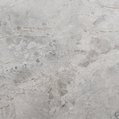 6 x 6 Marble Floor Tile in Silver
