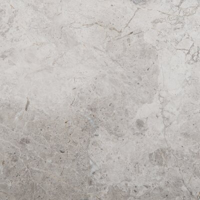 Natural Stone 12 x 12 Marble Field Tile in Silver
