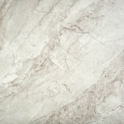 Europa 17 x 17 Porcelain Field Tile in Bianco
