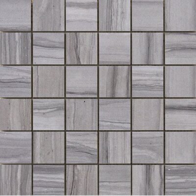 Chronicle 2 x 2/12 x 12 Porcelain Tile in Script Mosaic