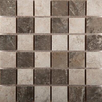 Bristol 2 x 2/13 x 13 Ceramic Tile in Winter