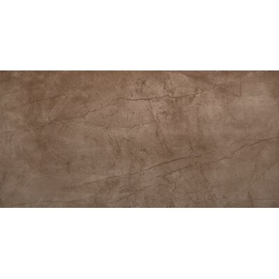 Citadel 12 x 24 Porcelain Field Tile in Brown
