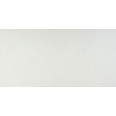 Crystal White 16 x 32 Porcelain Field Tile in Crystal White