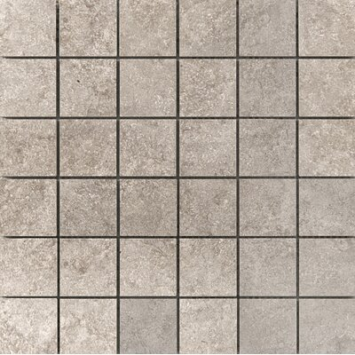 Baja 2 x 2 Ceramic Mosaic Tile in Tecate