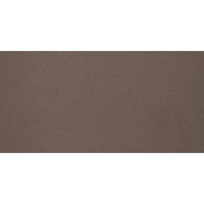 Perspective Pure 12 x 24 Porcelain Field Tile in Brown