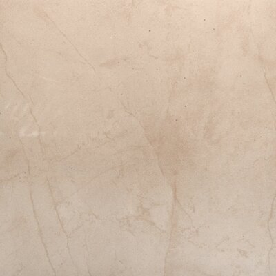 Citadel 24 x 24 Porcelain Field Tile in Beige