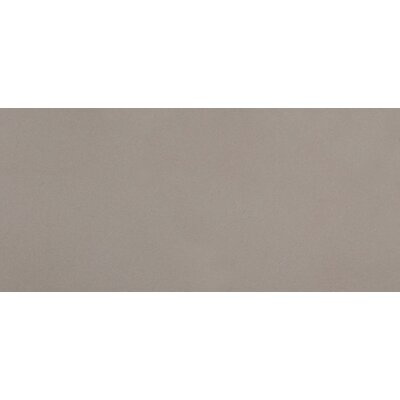Perspective 12 x 24 Porcelain Field Tile in Pure Gray