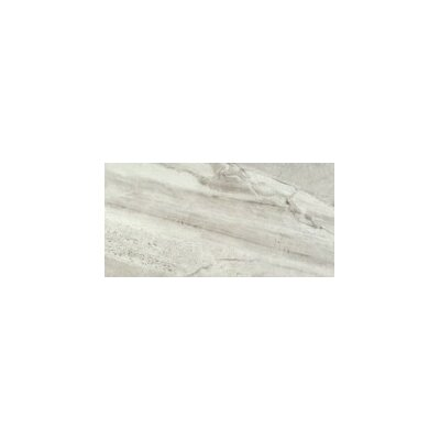 Europa 12 x 23 Porcelain Field Tile in Polished Bianco