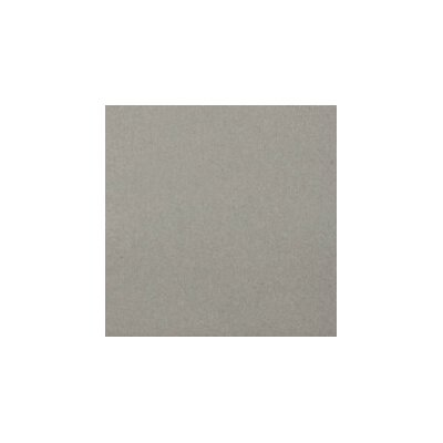 Perspective Pure 24 x 24 Porcelain Field Tile in Dove
