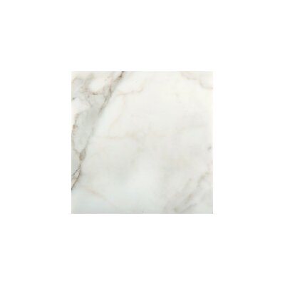 Marble 4 x 8 Tile in Calacata Oro Polished