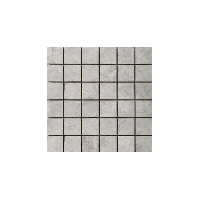 Marble 2 x 2/12 x 12 Mosaic Tile in Silver