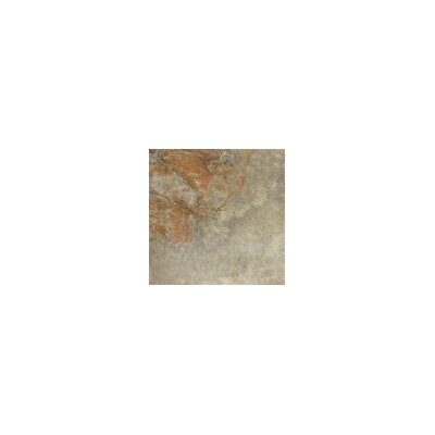 Bombay 20 x 20 Porcelain Field Tile in Tenali