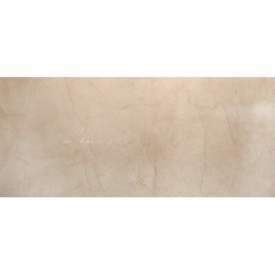 Citadel 24 x 35 Porcelain Field Tile in Beige