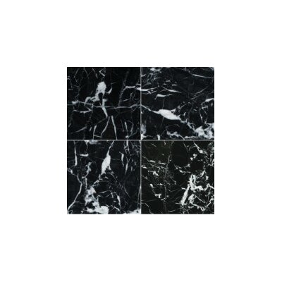 Marble 12 x 24 Tile in Black/White