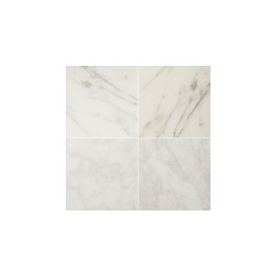 Bianco Gioia 3 x 6 Marble Tile in Polished White
