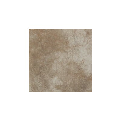 Bristol 12 x 24 Ceramic Tile in Blaise