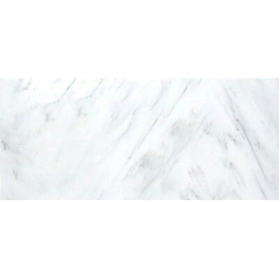 Marble 12 x 12 Tile in Winter Frost Classico