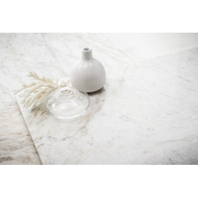 Marble 3 x 6 Subway Tile in Kalta Bianco