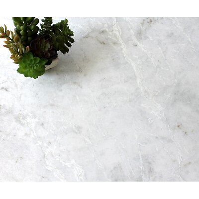 Marble 18 x 18 Tile in Kalta Fiore