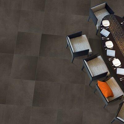 Cosmopolitan 13 x 3 Surface Bullnose Tile Trim in Earth