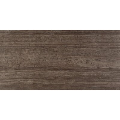 Ambiance 12 x 24 Porcelain Field Tile in Polished Palau