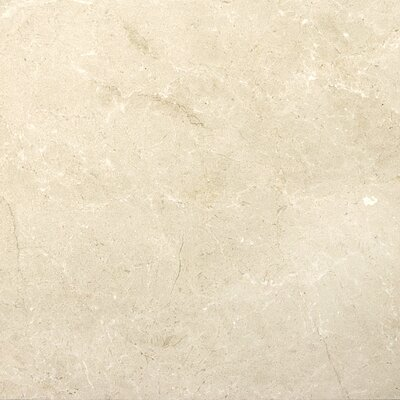 Marble 18 x 18 Tile in Crema Marfil Plus Honed