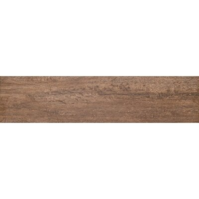 Woodwork 6 x 39 Porcelain Wood Look/Field Tile in Eugene