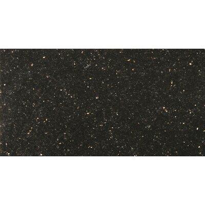 Granite 24 x 24 Field Tile in Galax y Black
