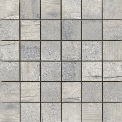 Ex plorer 2 x 2/13 x 13 Porcelain Mosaic Tile in Paris