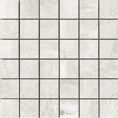 Ex plorer 2 x 2/13 x 13 Porcelain Mosaic Tile in Barcelona