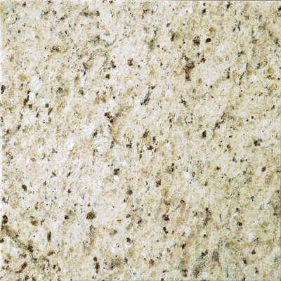 Natural Stone 12 x 12 Granite Field Tile in Giallo Ornamental