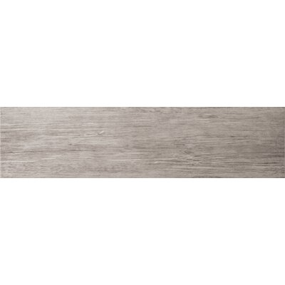 Country 3 x 24 Porcelain Bullnose Tile Trim in Francis