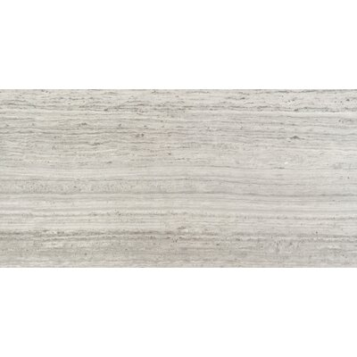 Ambiance 12 x 24 Porcelain Fabric Look/Field Tile in Cayman