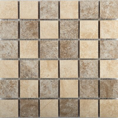 Origin 2 x 2 Ceramic Mosaic Tile in Mountain