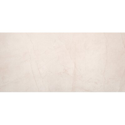 Citadel 12 x 24 Porcelain Field Tile in Ivory